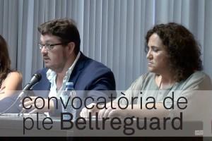 convocatòria_plens